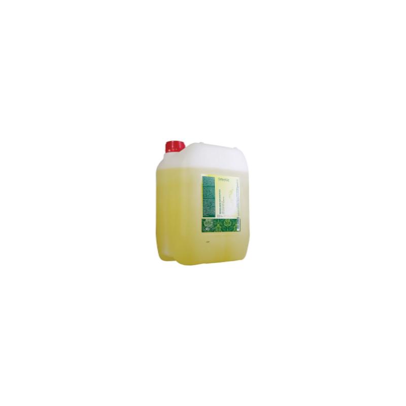 Avocado Shampoo Salerm - 1